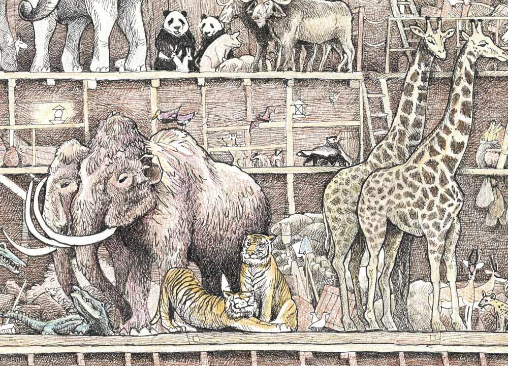 "Image of Noah's Ark 17"" X 19"""