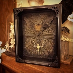 Image of Double mount bat/skeleton 8x10 shadow box