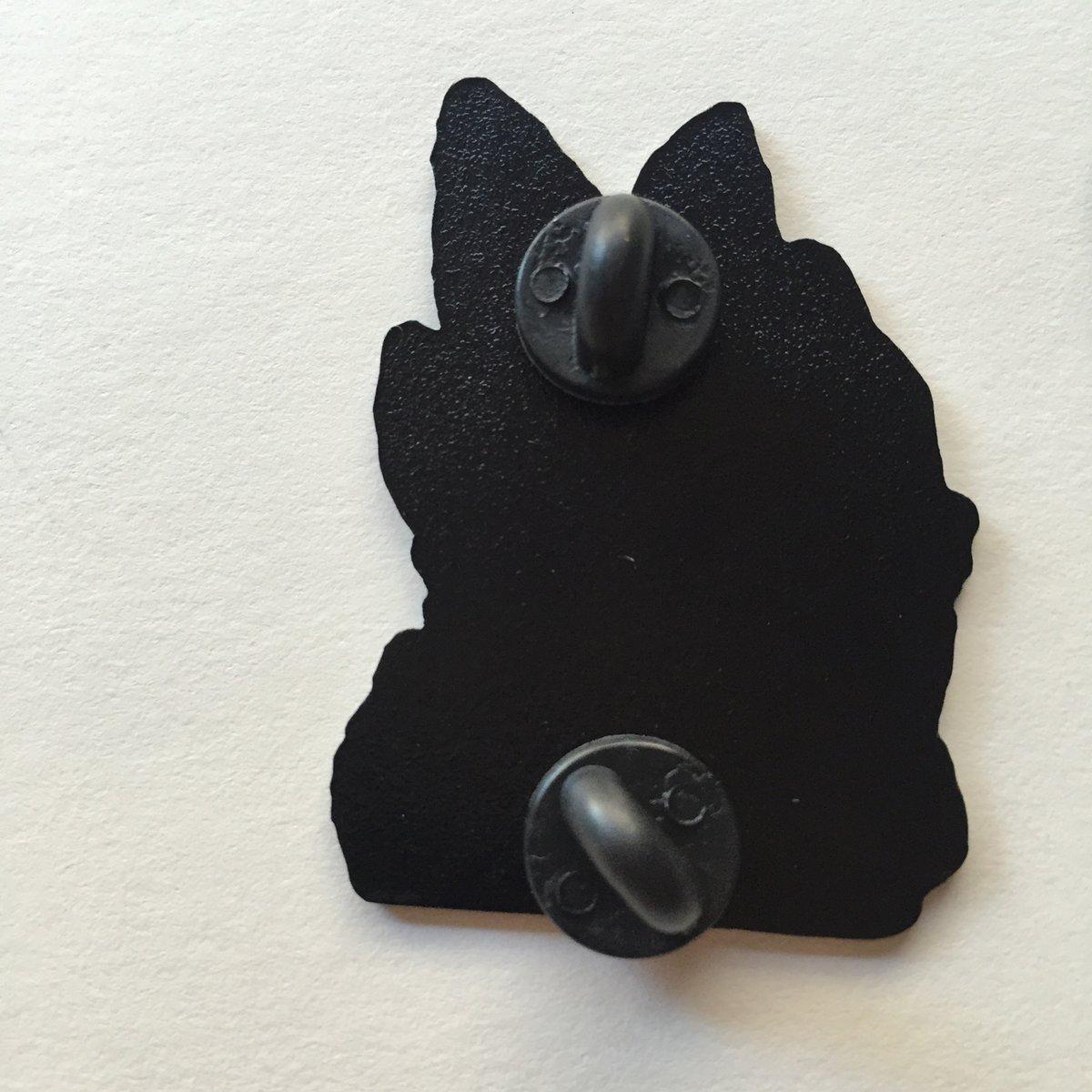"Image of ""Desert Fish"" 1.75"" Soft Enamel Pin"