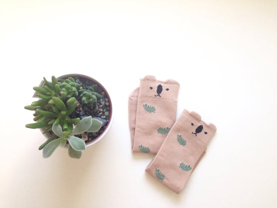 Image of Koala Fern Socks