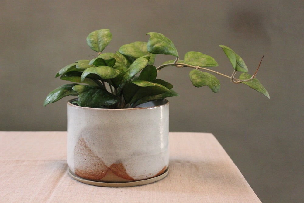 Image of Glacier Planter Medium