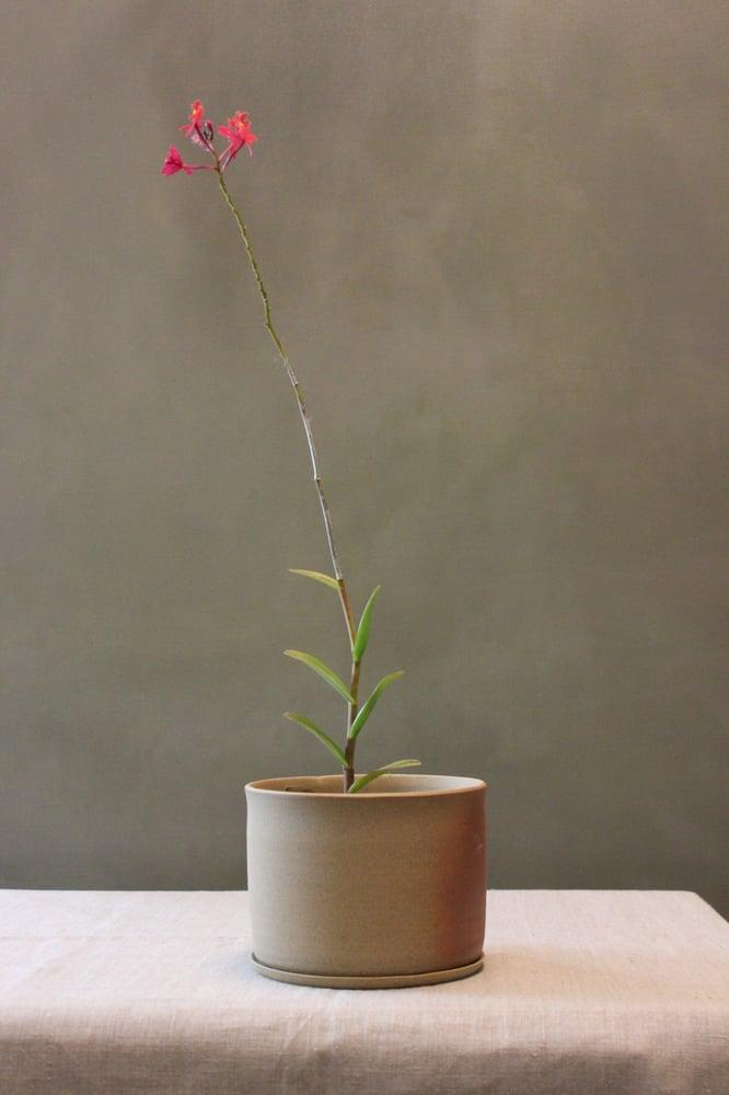 Image of Sand Planter Medium