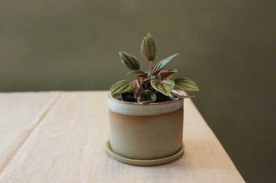 Image of Desert Planter Small