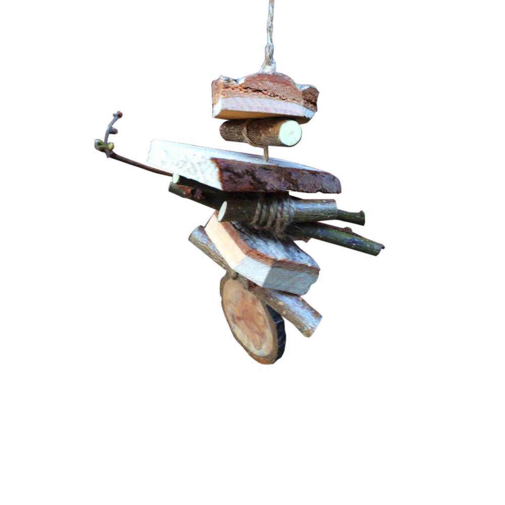 Image of Woody Toy