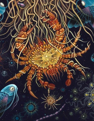 "Image of MEDUSAE ~ 20 x 24"" Signed Open Edition Print"