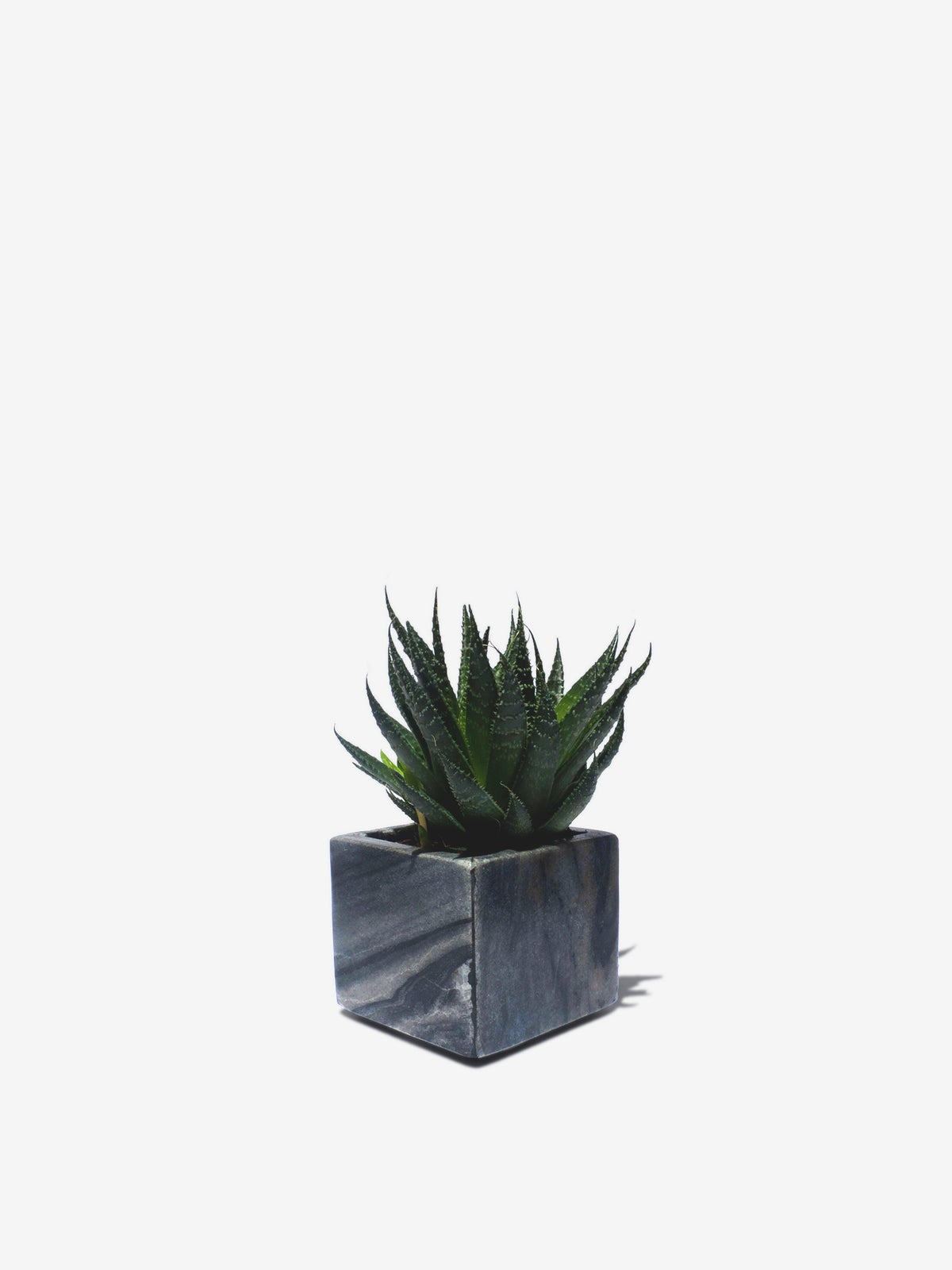 Image of Marble Planter