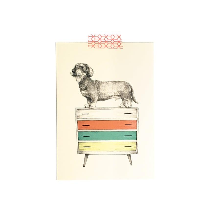 Image of Carte postale simple Teckel