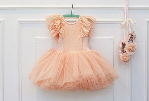 Image of Peach Lace Tulle Sequin Dress, Ballet, Flower Girl, Flutter Sleeves, Girl Toddler Dress, Shabby Chic