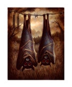 "Image of Bats- 8x10"" Open Edition Print"