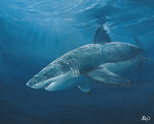 Image of Limited edition great white shark print