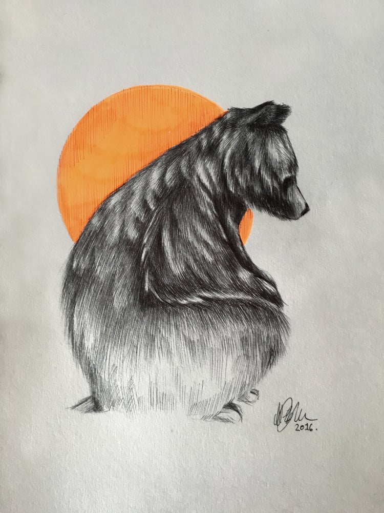 Image of Biro Bear