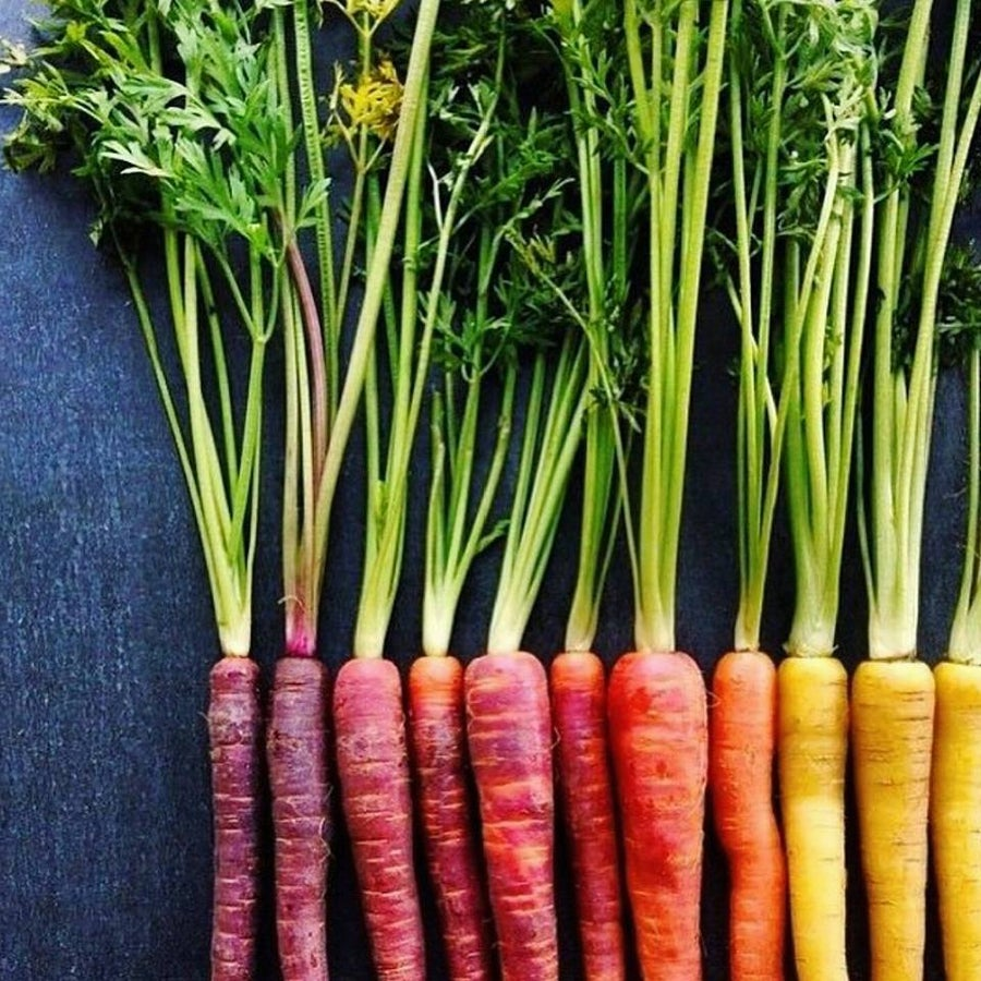 Image of Rainbow carrots