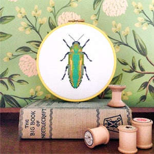 Image of Green Beetle cross-stitch PDF pattern