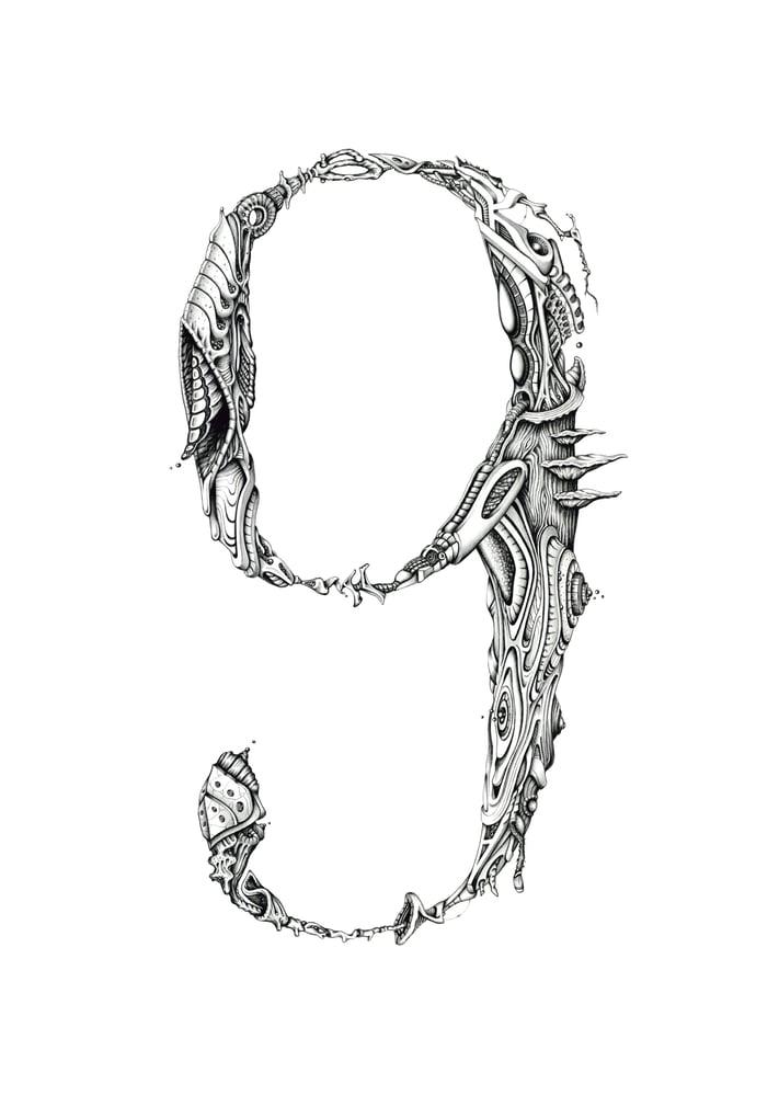 Image of 6/9 orga