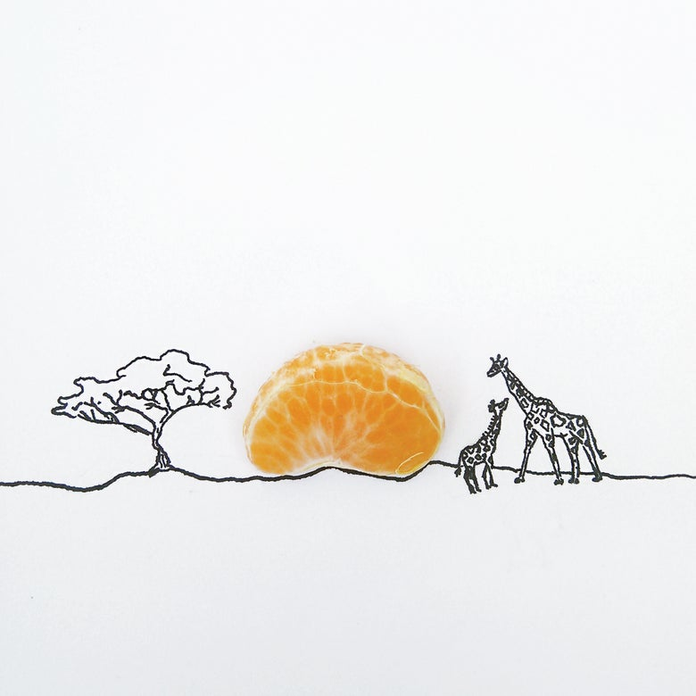 Image of Lion King Clementine