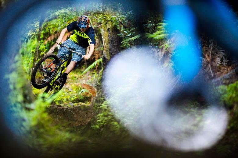 Image of Connor Hamilton - Rotorua Forest