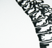 Image of Spine Papercut
