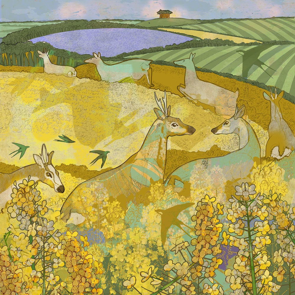 Image of Oilseed Amble - Greetings Card