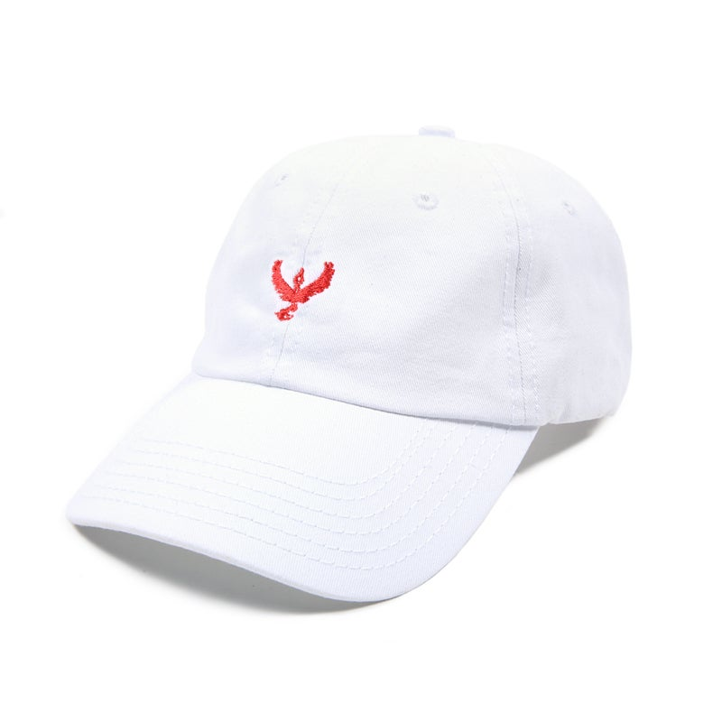Image of Team Valor Low Profile Sports Cap - White