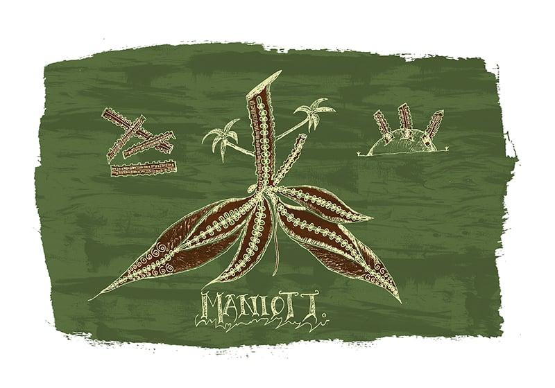 Image of MANIOTT