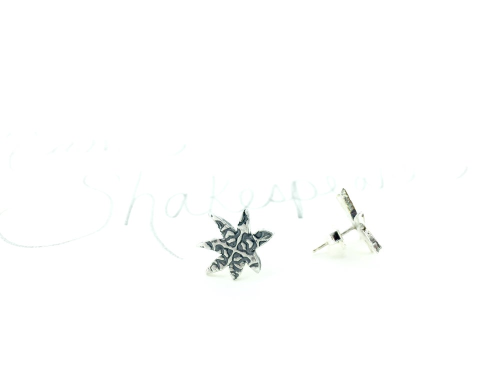 Image of Star post earrings