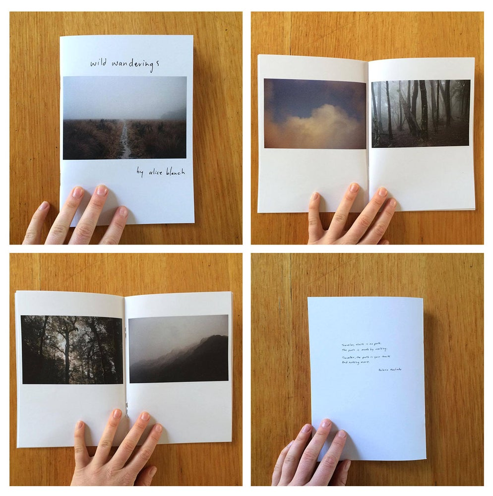 Image of 'wild wanderings' // artist book
