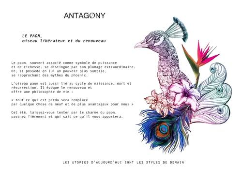 Image of ALIXE print Exotic Peacock