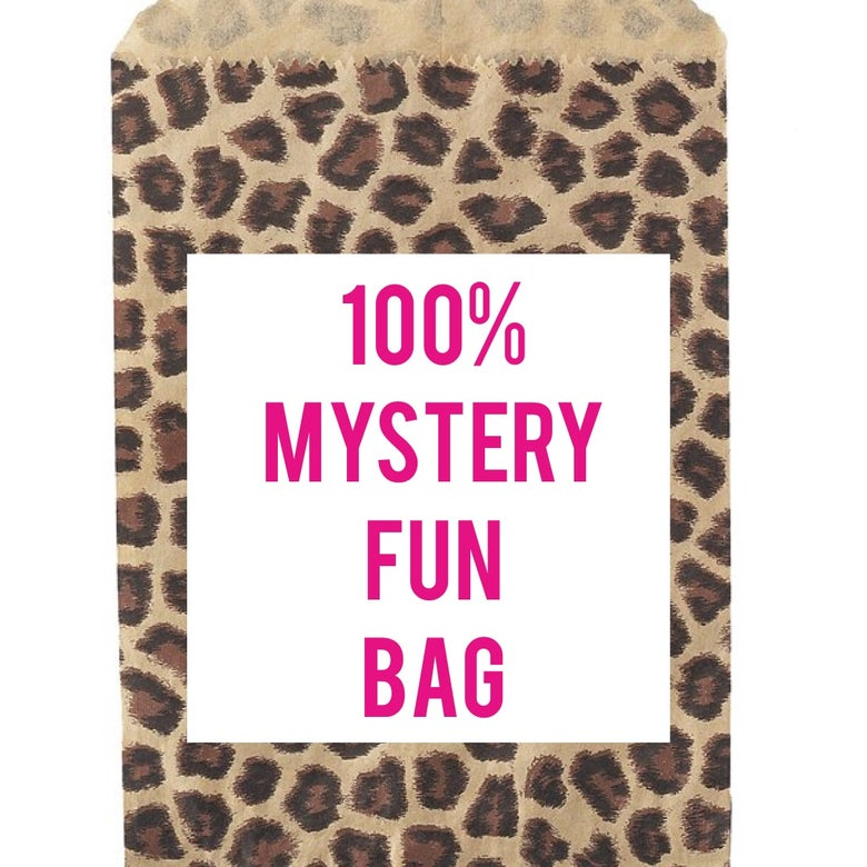 Image of Mystery Fun Bags