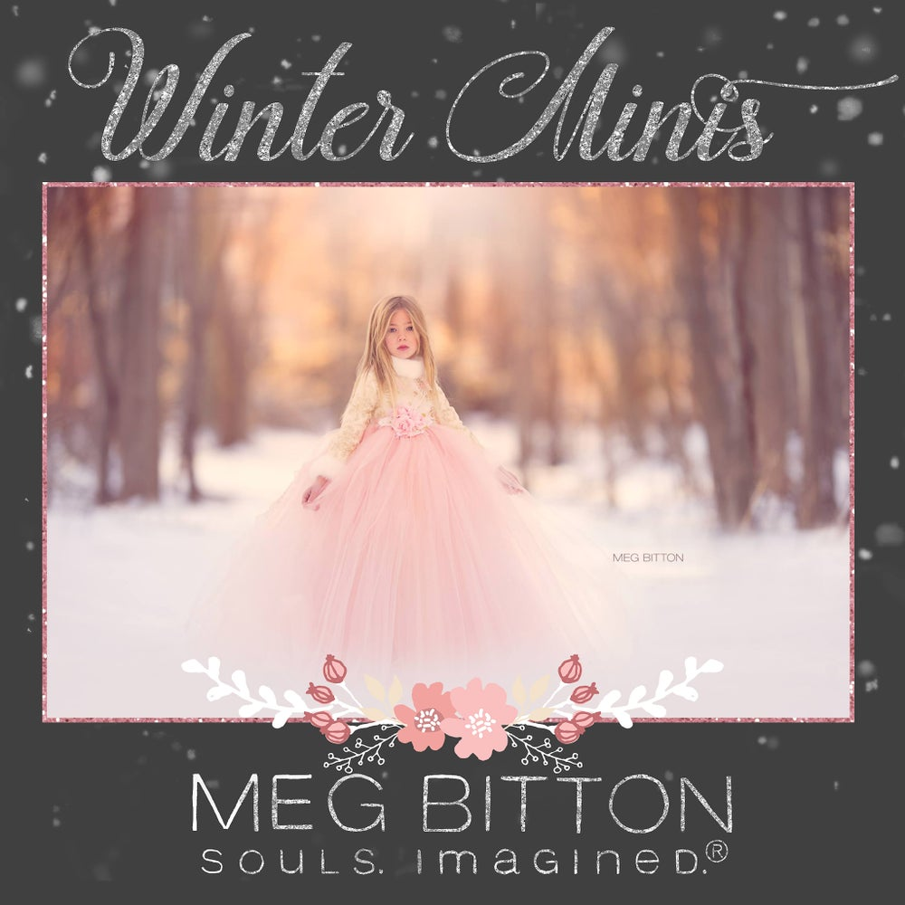 Image of Winter Mini Sessions