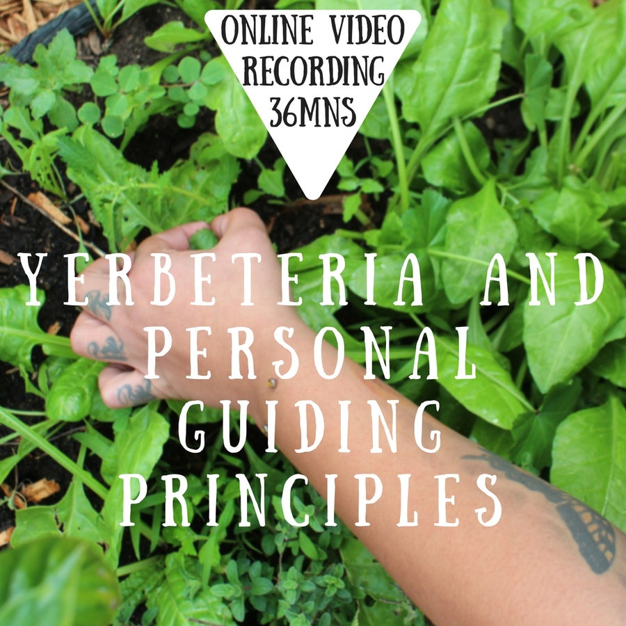 Image of Online Video: Yerbeteria and Personal Guiding Principles