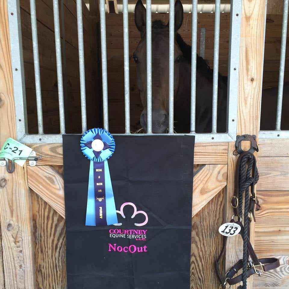 Image of Courtney Equine Stall Banner