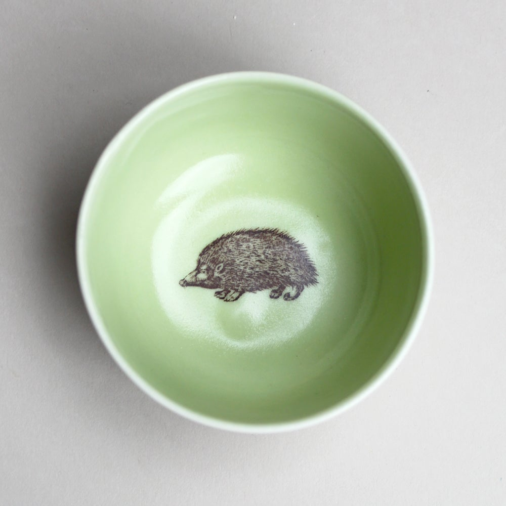 Image of roundie bowl with hedgehog, avocado