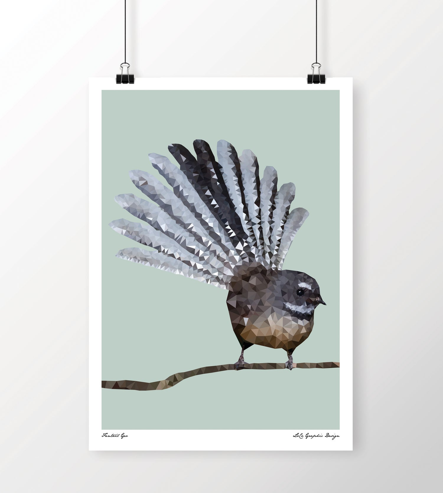 Image of Fantail Geo