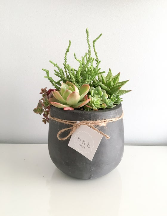 Image of Mini Concrete Planter