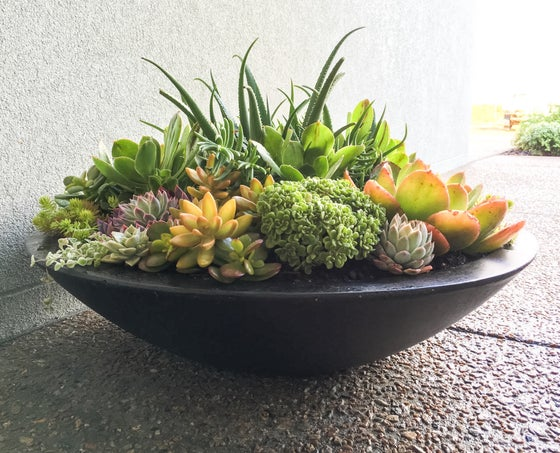 Image of Light Weight Wok Planter