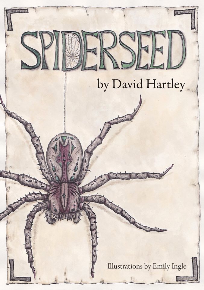 Image of Spiderseed