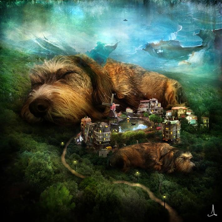 Quot Sleeping Dogs Quot Alexander Jansson Shop