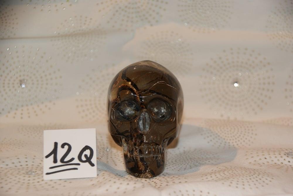 Image of Crâne Septaria 0,690 kg