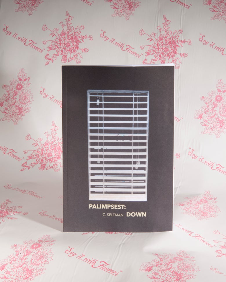Image of PALIMPSEST: DOWN by C. Seltman