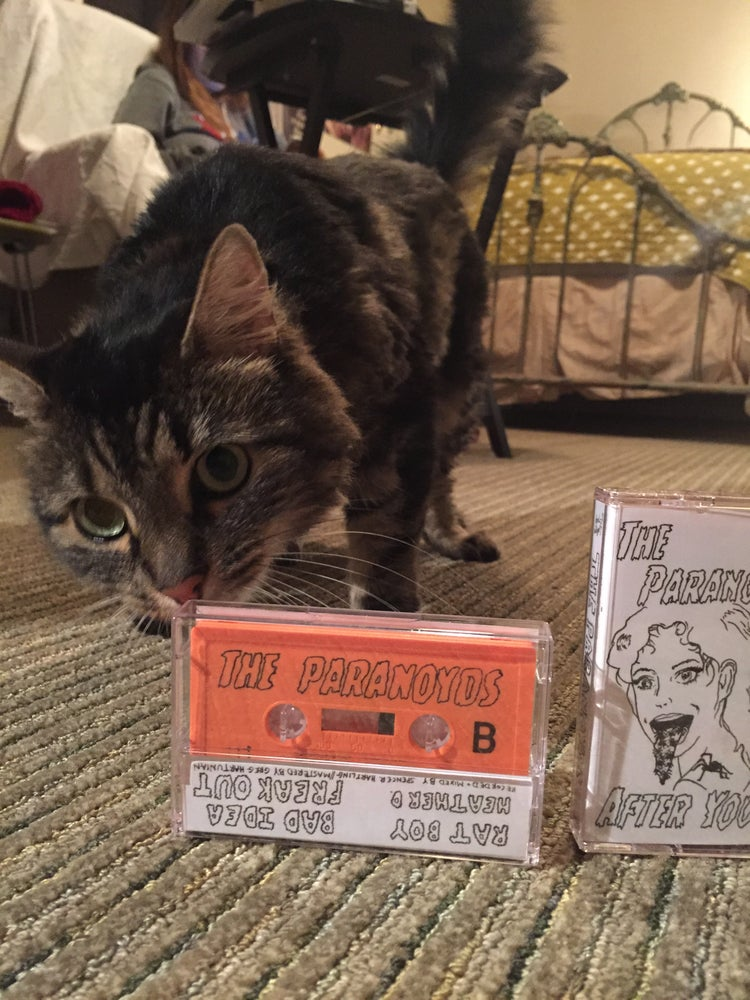 Image of CREAMSICLE CASSETTES
