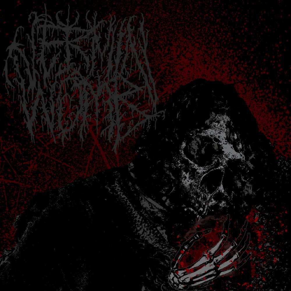 Image of Vermin Womb - Decline LP