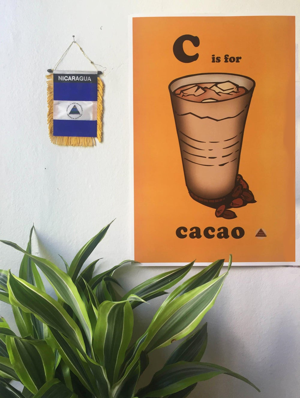 Image of Cacao Poster