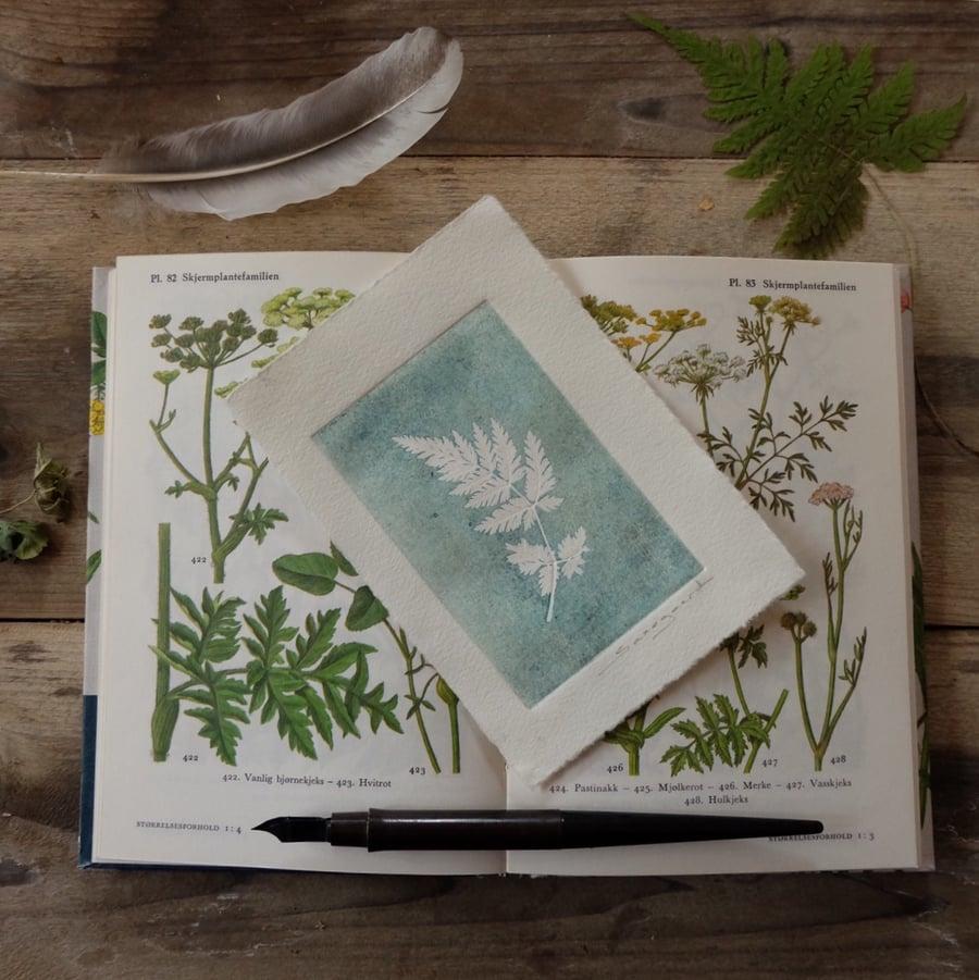 Image of Botanical print, Fern