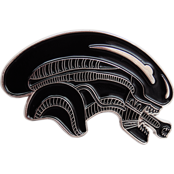 Image of 8TH PASSENGER PIN