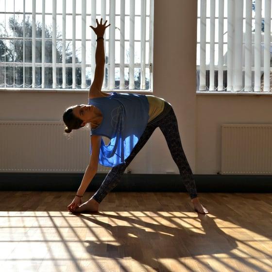 Image of Private Yoga Classes