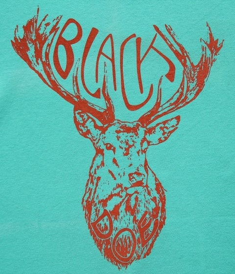 Image of Black Doe T-SHIRT, aqua & coral