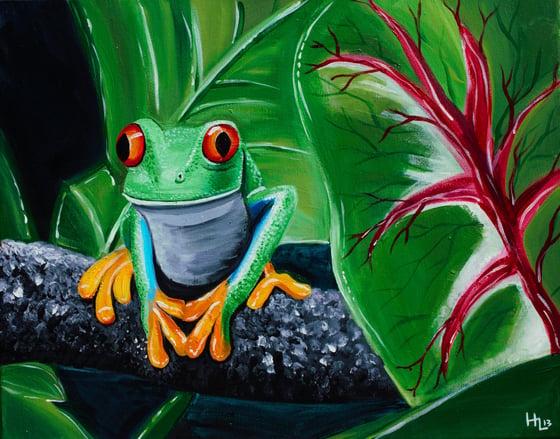 Image of Rainforest Dweller