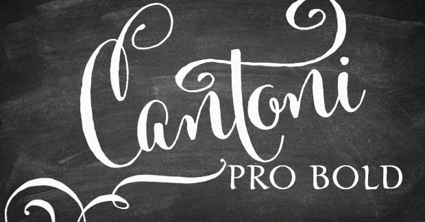 Image of Cantoni Pro Bold