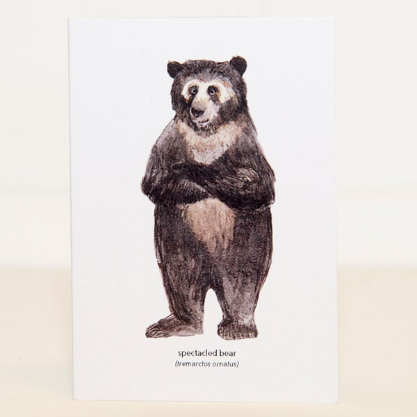 Image of Spectacled Bear Mini Card