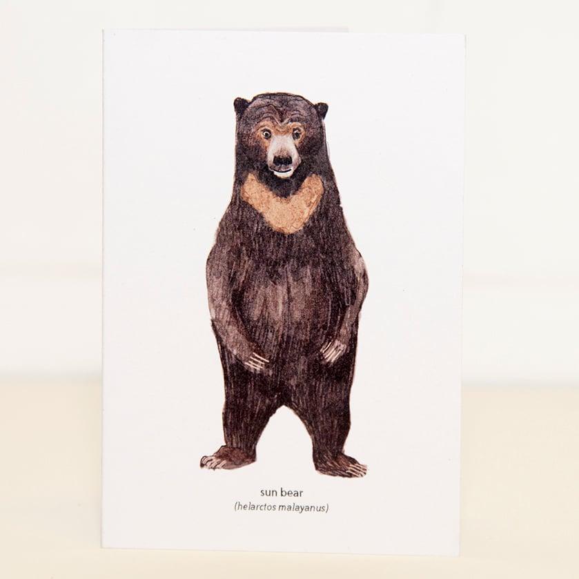 Image of Sun Bear Mini Card